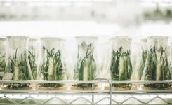 5 Ways to Turn Your Lab into an Eco-Friendly Space